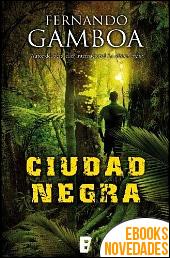 Ciudad Negra de Fernando Gamboa