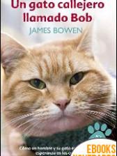 Un gato callejero llamado Bob de James Bowen