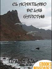 El acantilado de las gaviotas de Úrsula Llanos
